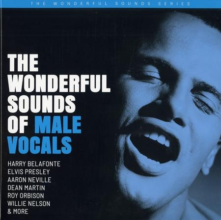 Various Artists: The Wonderful Sounds Of Male Vocals