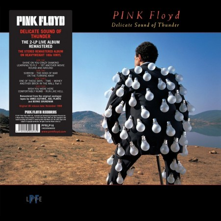 Pink Floyd: Delicate Sound Of Thunder - Remastered