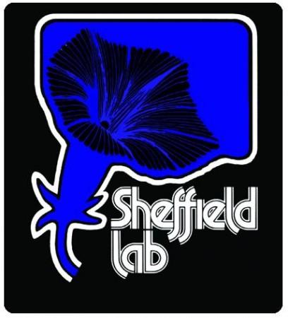 Diverse Sheffield Lab